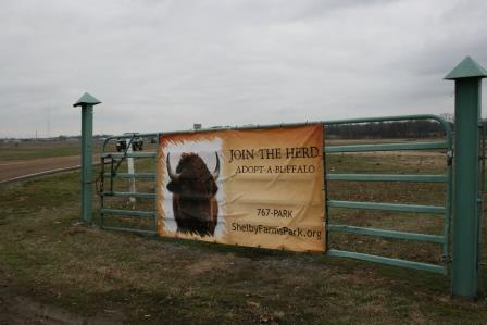Shelby Farms Park IMG_9257
