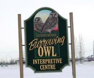 Burrowing Owl Centre IMG_6759sm