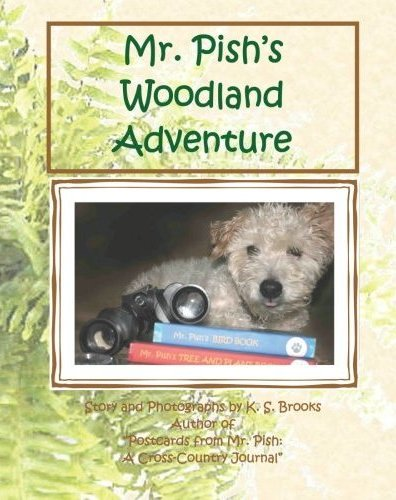 WoodlandAdventure