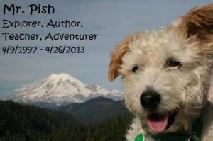 Mr-Pish-tribute-photo