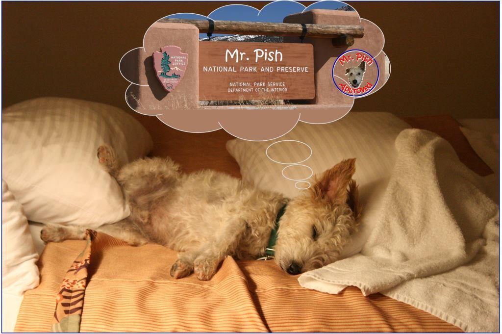 mr pish dreaming of natl park TRIM