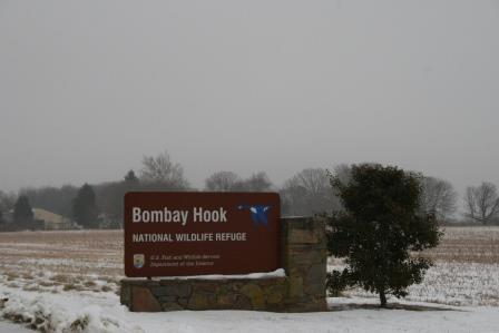 welcome to bombay hook IMG_8634