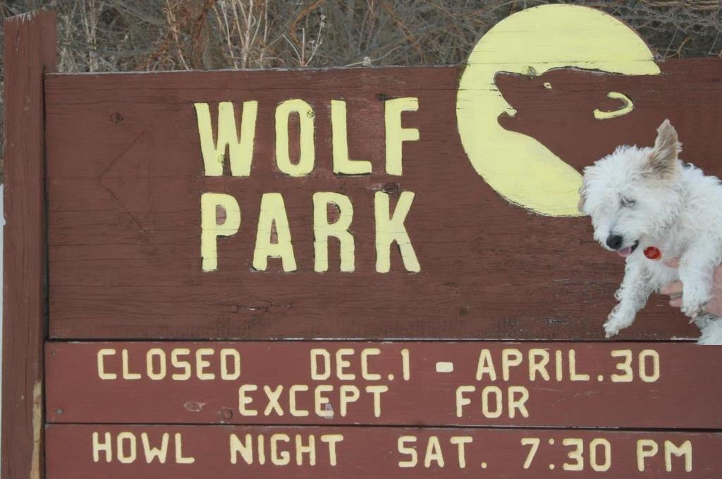 pookie wolf park