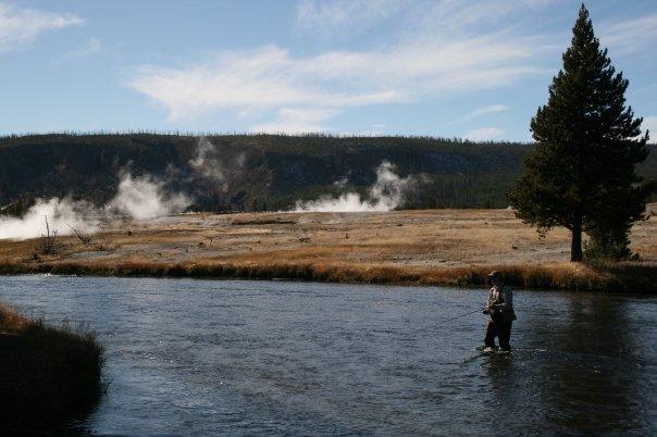 Yellowstone National Park  yellow7