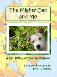 Mighty Oak and Me 2015 front cover yellow